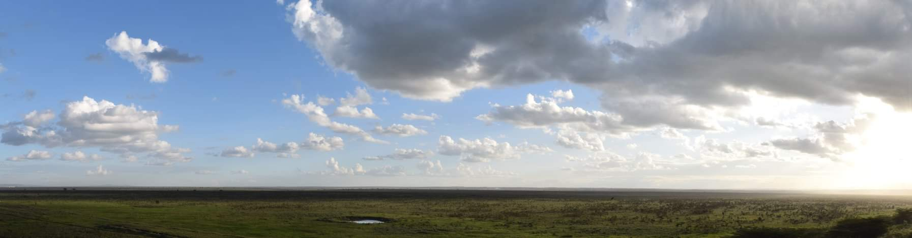 A panoramic view of sunset over Nairobi National Park.