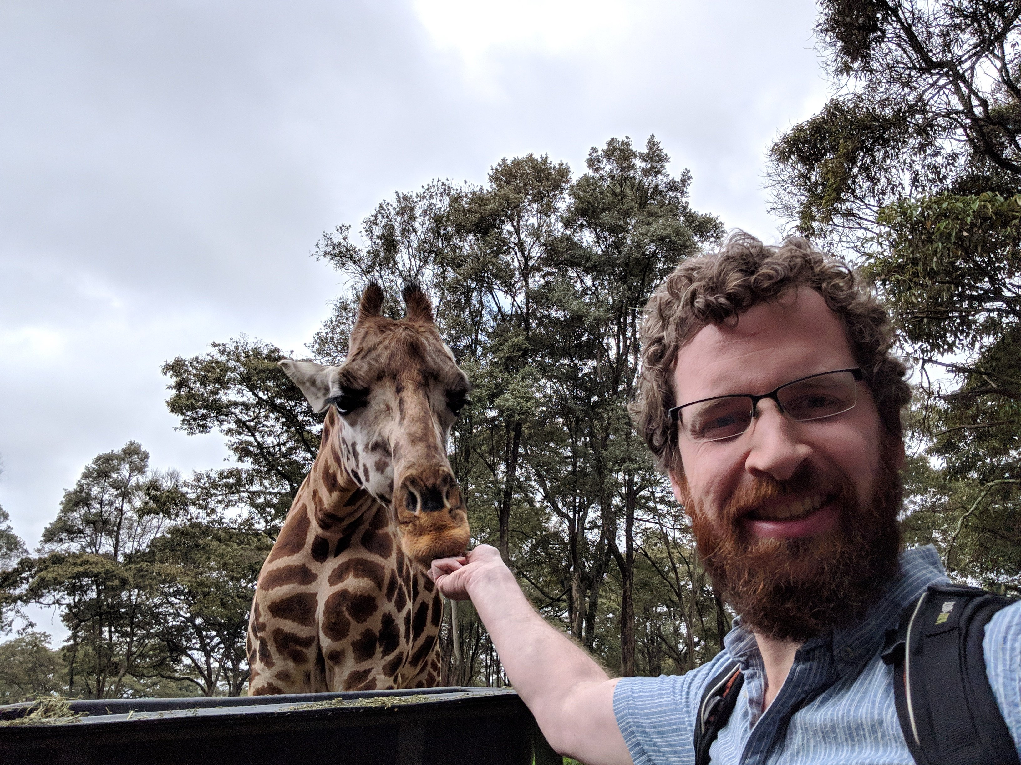 A selfie of me feeding a giraffe.